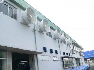 Quạt thông gió gắn tường công nghiệp mua hãng nào chất lượng nhất