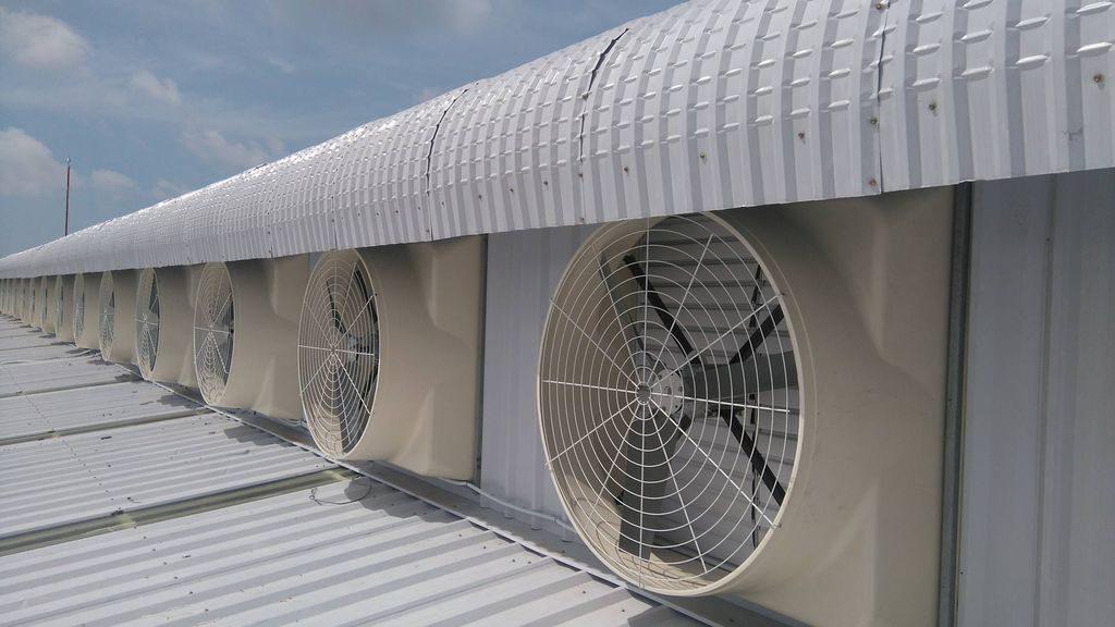 Quạt thông gió nhà xưởng có tác dụng gì ?
