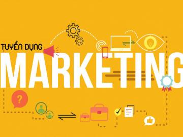 Vimax Tuyển dụng – Nhân viên Marketing